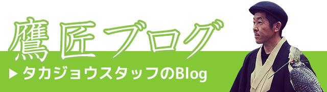 鷹匠スタッフのブログ